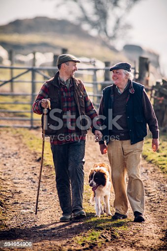 Farmers walking along a track with a dog following closely. Gate closed behind them with sheep out of focus in the background. Senior and mid adult male smile at each other.