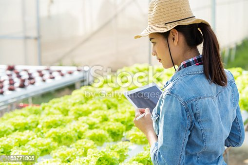 1096949092 istock photo Farmers are recording data on tablets at Hydroponic vegetables salad farm. 1153771805