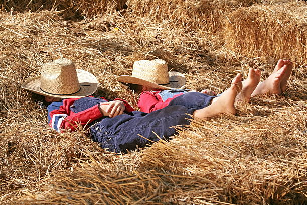 Farmers Asleep in the Hay stock photo