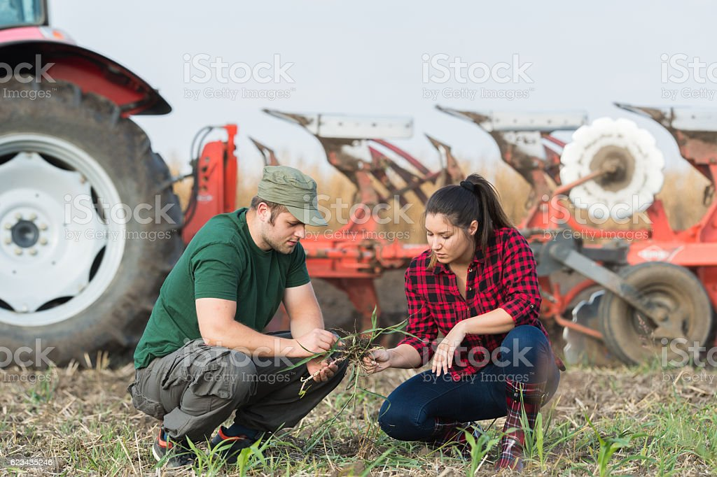 Farmers examing dirt while tractor is plowing field stock photo
