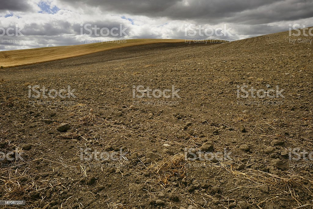 Farmers Field royalty-free stock photo