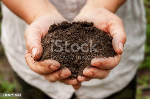 Farmer's hands hold a pile of fertile land in the garden.