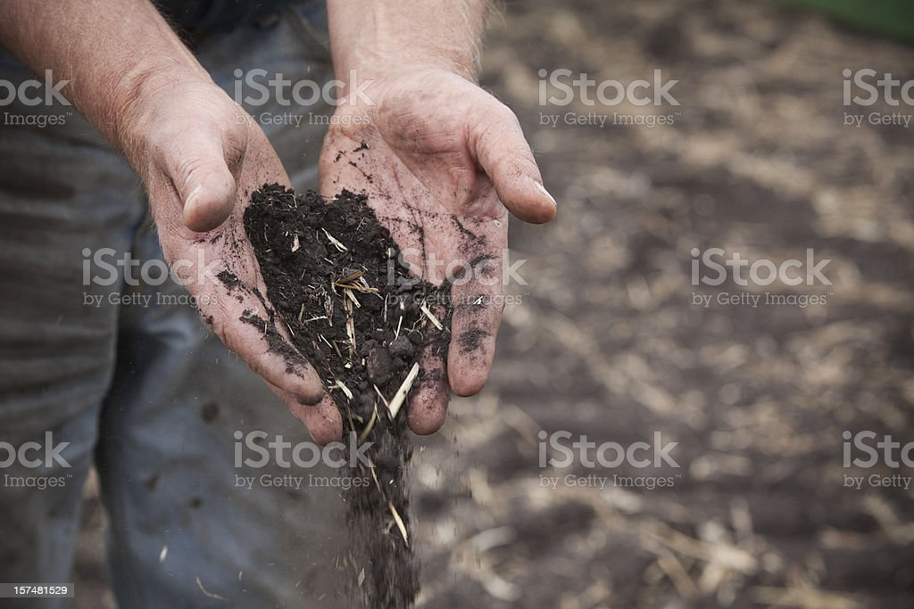 Farmer's hands holding soil. stock photo
