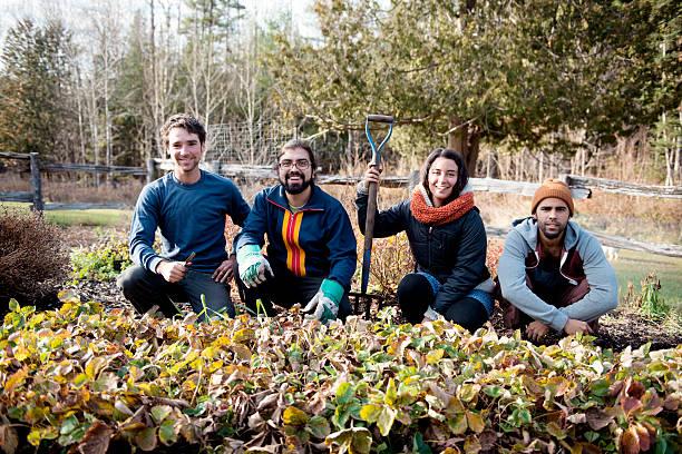 Farmers in an organic garden on fall morning - foto de stock