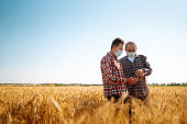 Farmers in sterile medical masks discuss agricultural issues on a wheat field. Farmers with tablet in the field. Smart farm. Agro business. Covid-19.