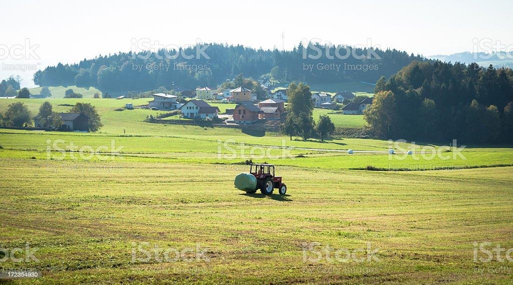 Los agricultores de vida foto de stock libre de derechos