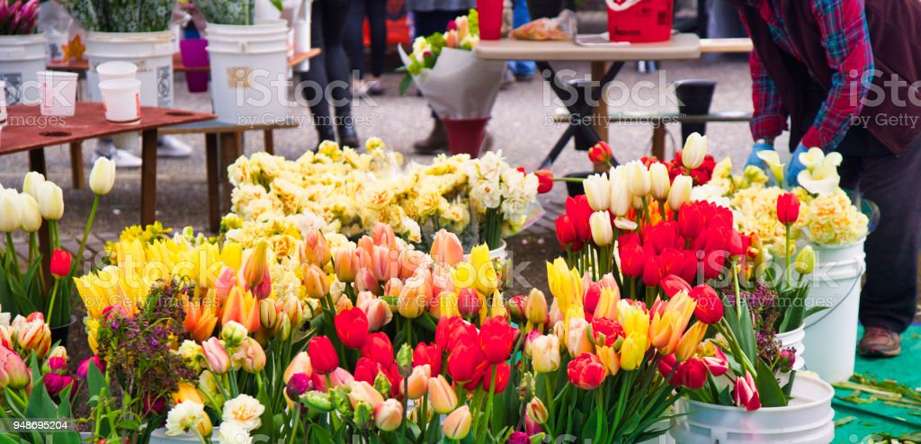 A tulip bouquet is being made by someone working at the farmer\'s...