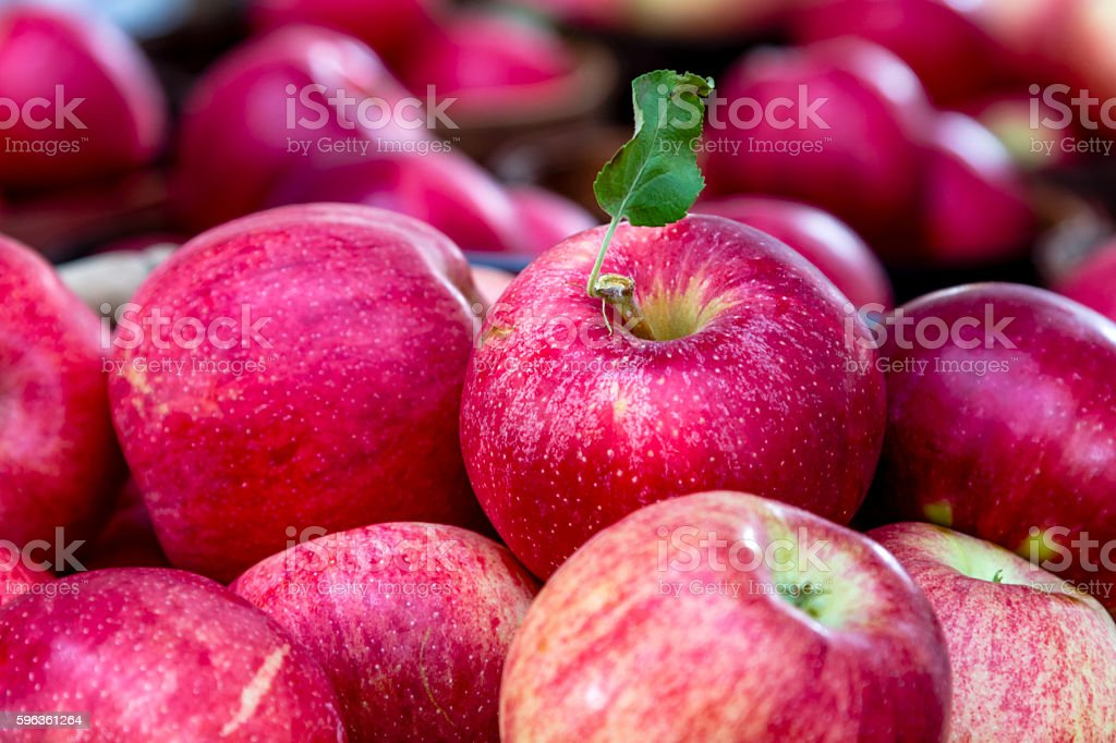 Farmers Market Fruits and Vegetables royalty-free stock photo