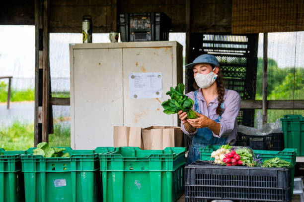 A farmers market in operation during Covid-19 stock photo