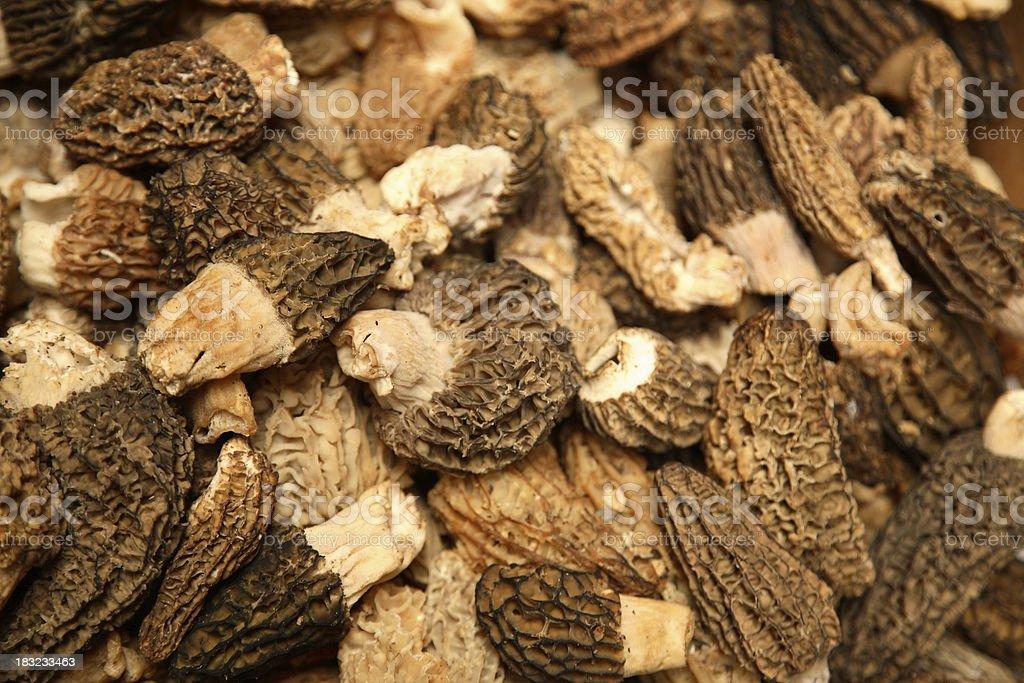 Farmers Market: Morel Mushrooms royalty-free stock photo