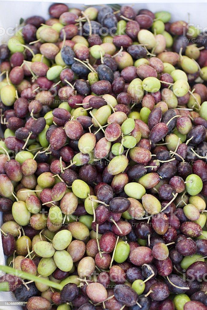 Farmers Market: Olives royalty-free stock photo
