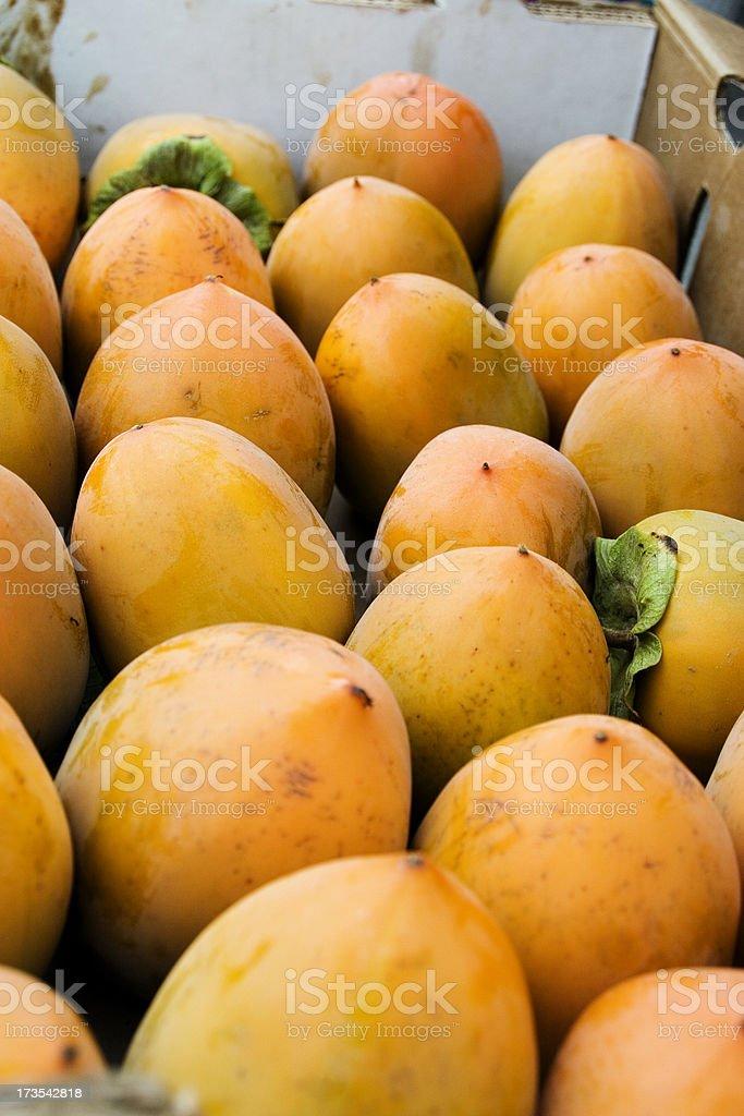 Farmers Market: Persimmons stock photo