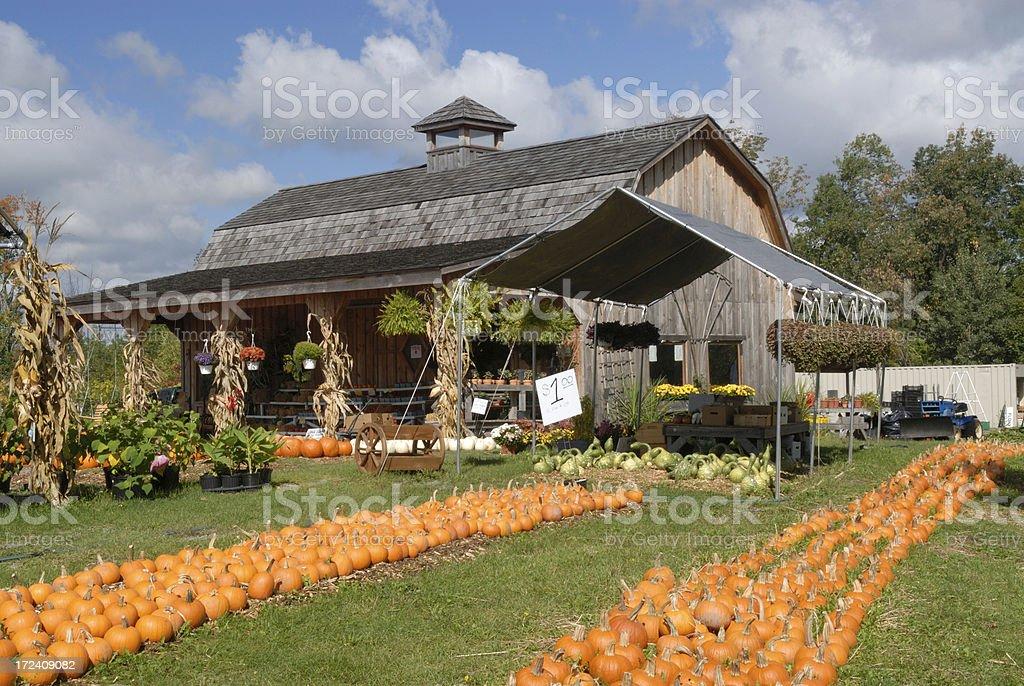 Farmers Market stock photo