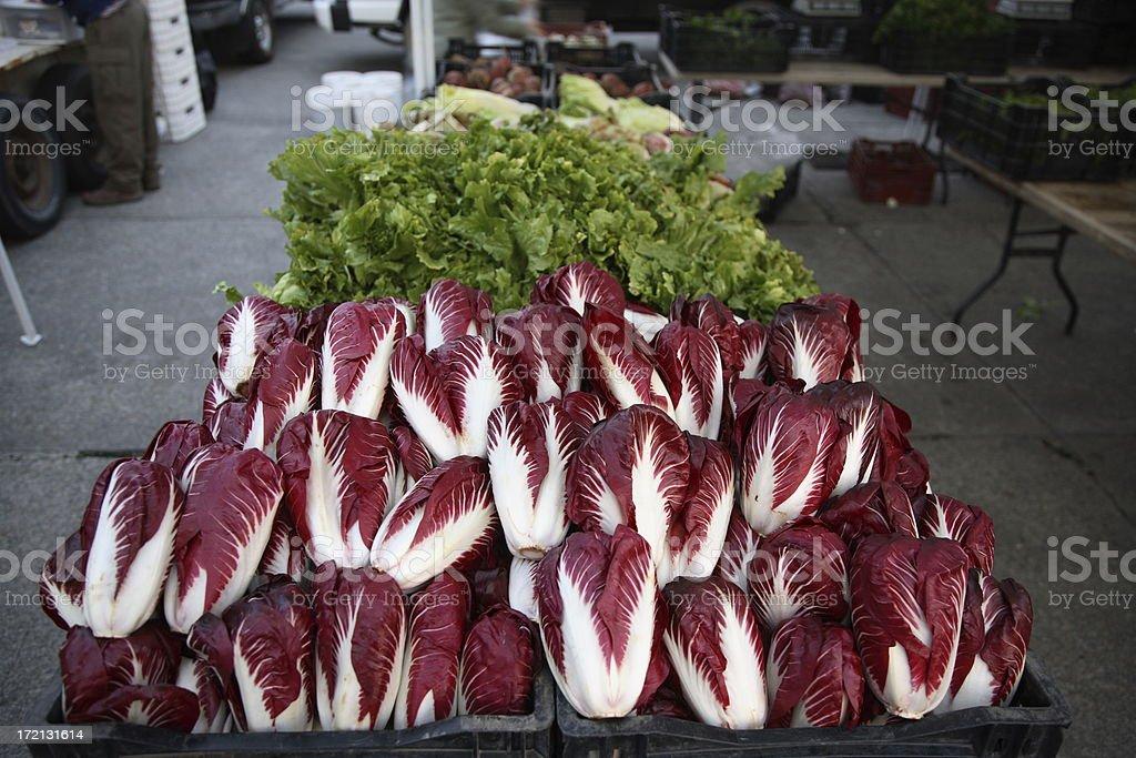 Farmers Market: Radicchio royalty-free stock photo