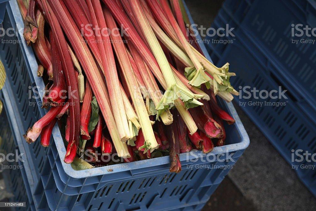 Farmers Market: Rhubarb stock photo