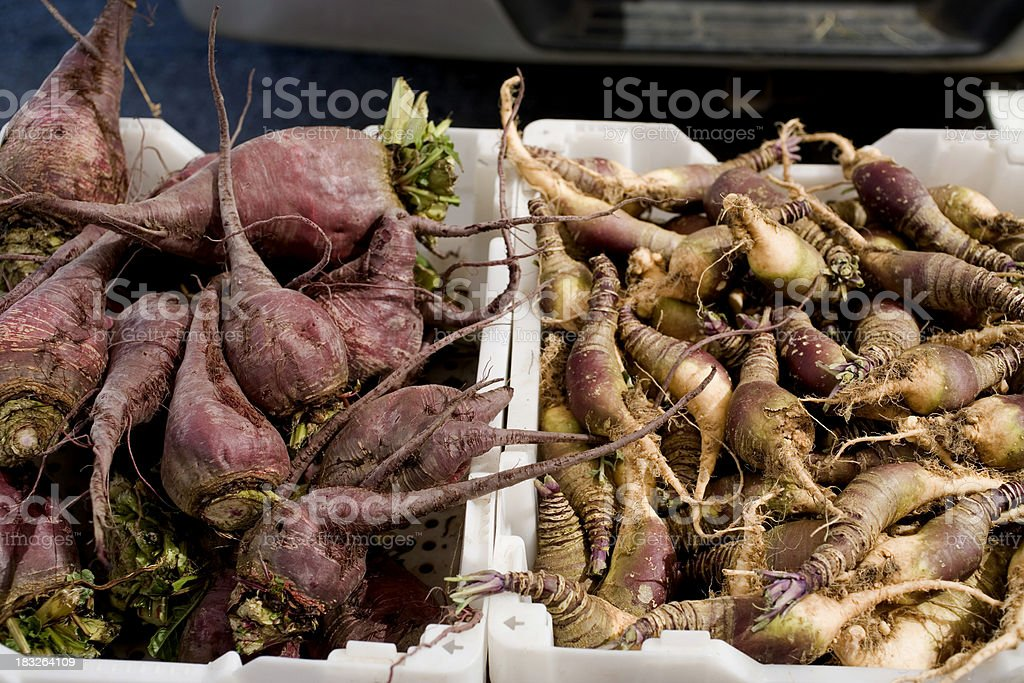 Farmers Market: Root Vegetables royalty-free stock photo
