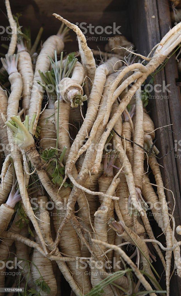 Farmers Market: Salsify stock photo