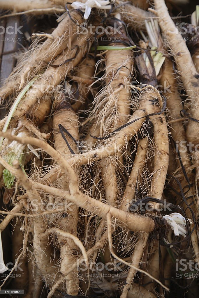 Farmers Market: Salsify Roots stock photo