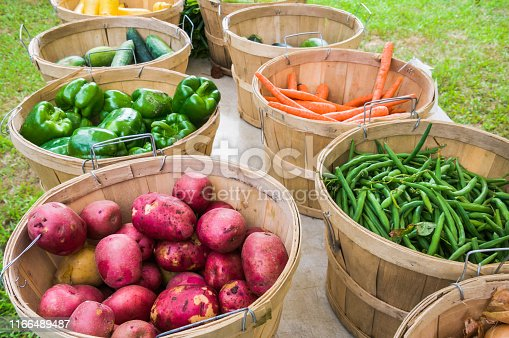 Baskets of fresh red potatoes, green peppers, green beans and orange carrots at a Cape Cod Farmers Market.