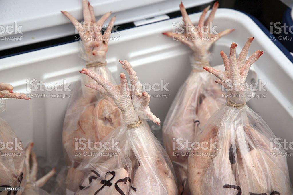 Farmer's Market: Whole Chickens royalty-free stock photo