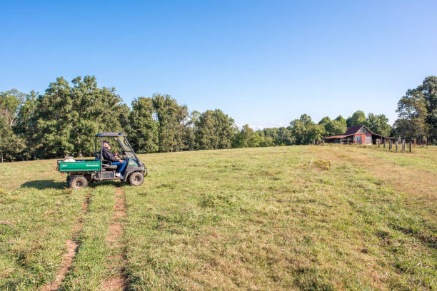 Farmers riding in a field in South Carolina Inman, South Carolina, Sept. 10, 2017: Farmers ride a motorized buggy all terrain vehicle, a Kawasaki Mule, over farmland in late summer, toward the barn to check on their pasture. apostate stock pictures, royalty-free photos & images