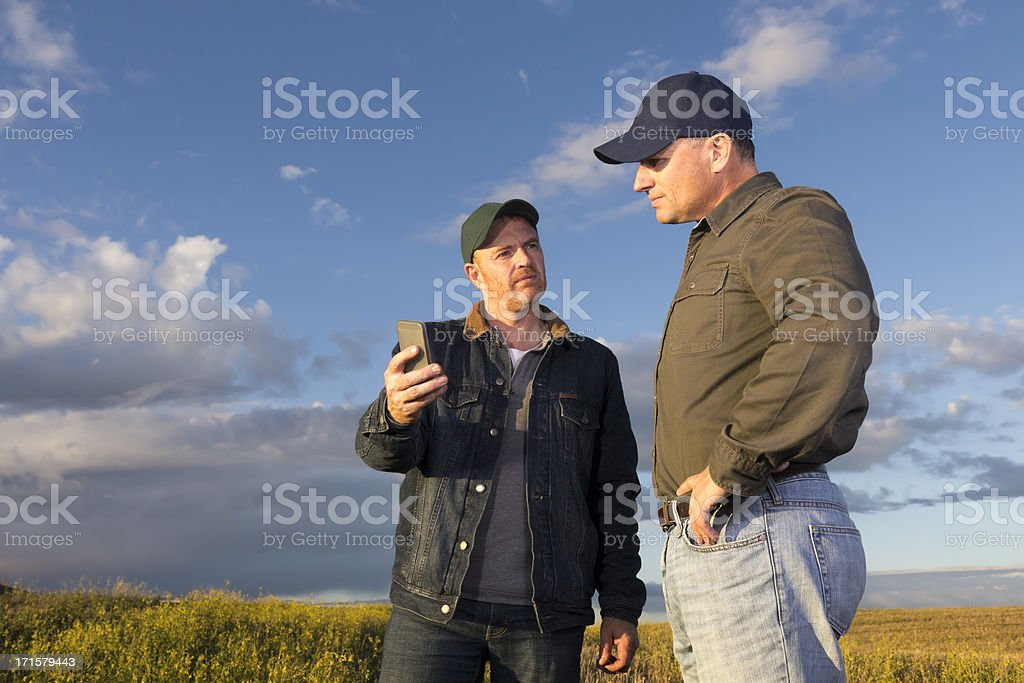 Farmers with a Smartphone royalty-free stock photo