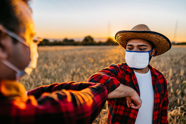 Farmers with face masks greeting with elbow bump stock photo