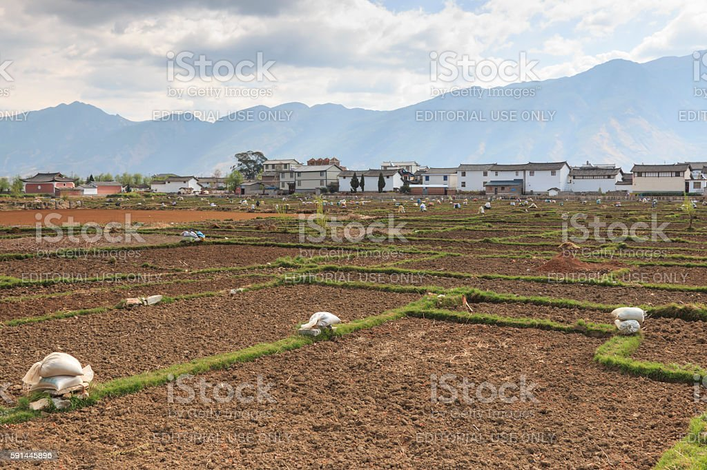 Farmers working in the fields in Heqing in Yunnan stock photo