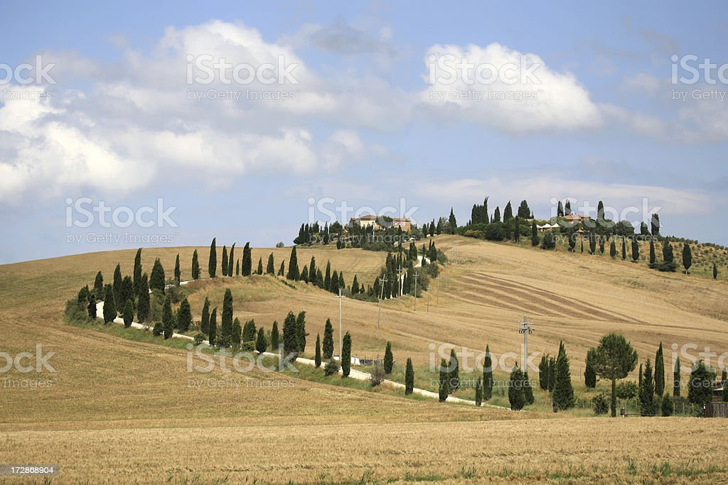 Farmhouse and cypress lined road in Crete Senesi, Tuscany Italy stock photo