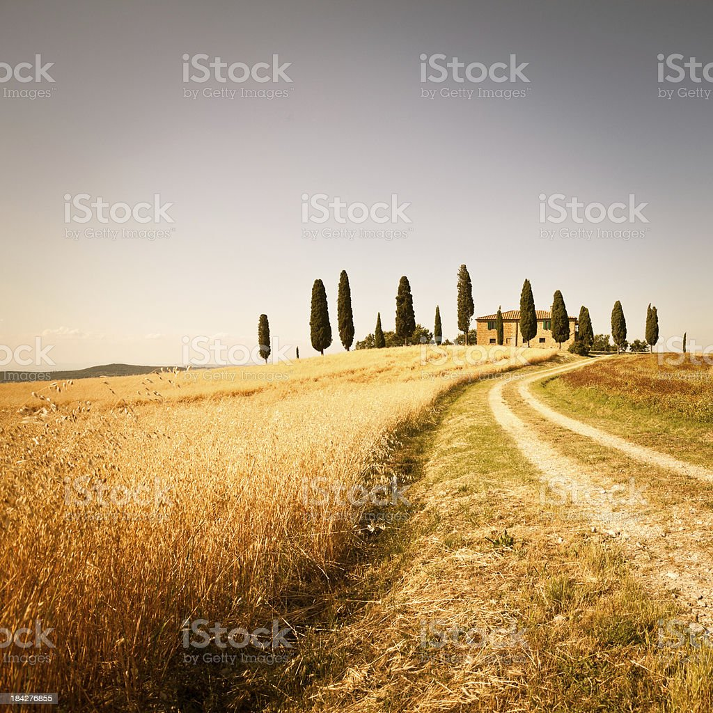 Farmhouse and Rural Road in Val d'Orcia, Tuscany stock photo