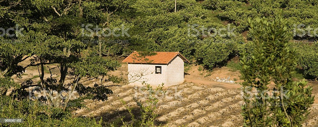Farmhouse in a field royalty-free stock photo