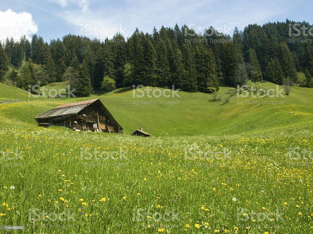 Farmhouse in alpine hills stock photo