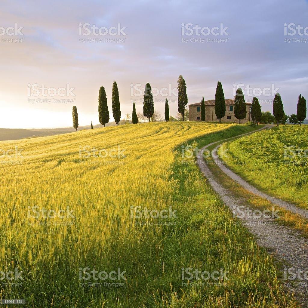 Farmhouse in sunset - Tuscany, Italy royalty-free stock photo