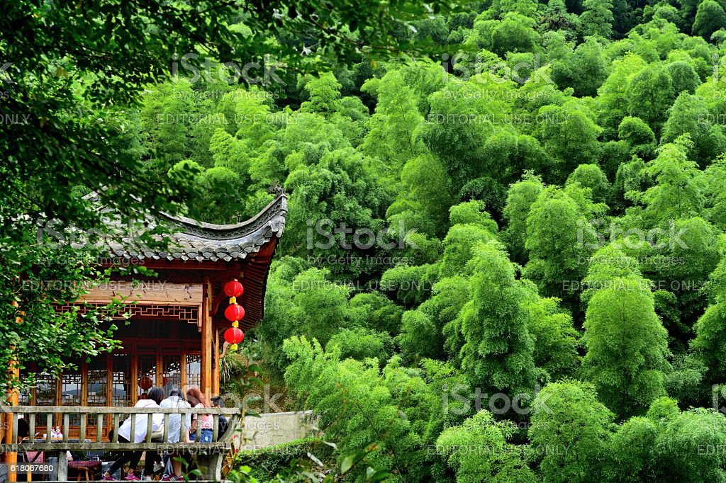 farmhouse in the bamboo forest 01 stock photo