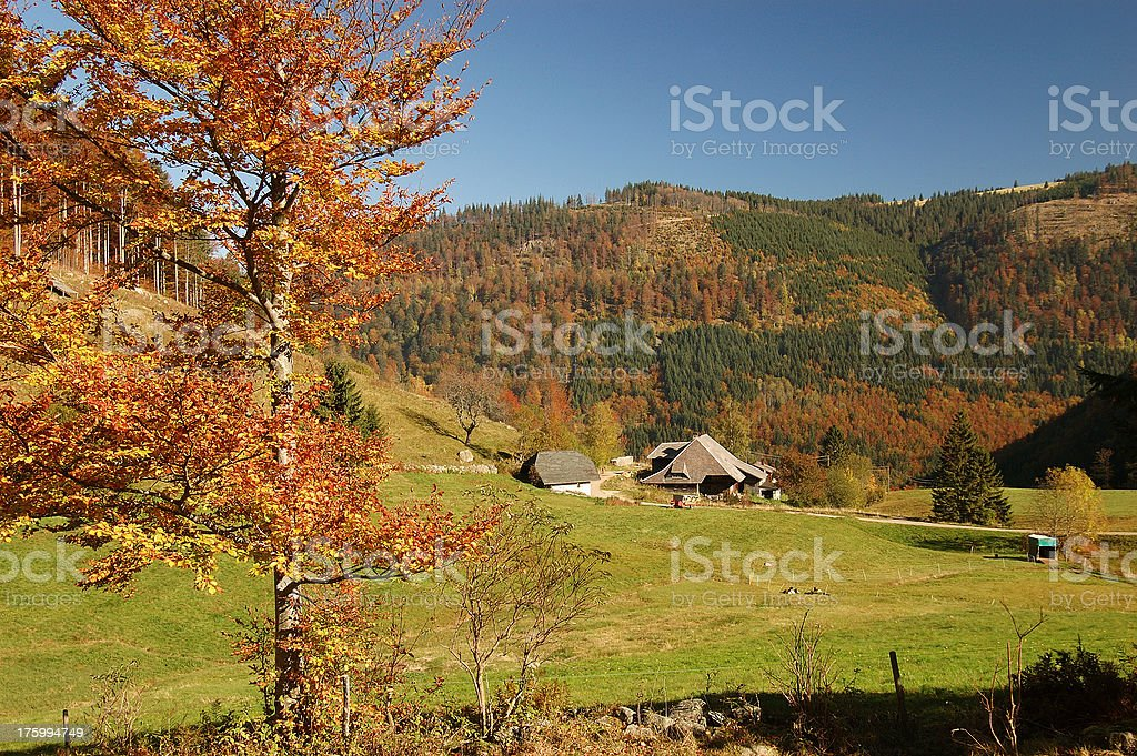 farmhouse in the Black Forest royalty-free stock photo
