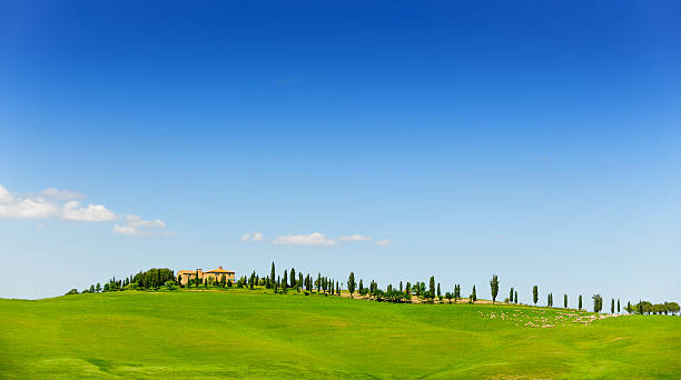 farmhouse in Tuscany landscape stock photo