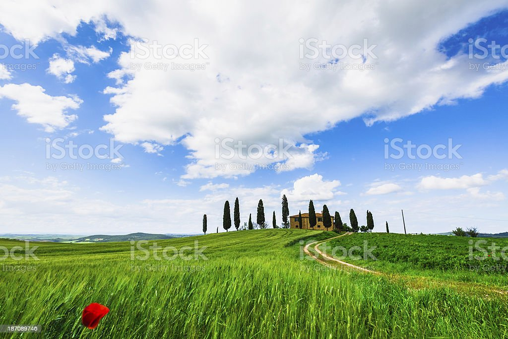 Farmhouse in Val d'Orcia, Tuscany royalty-free stock photo