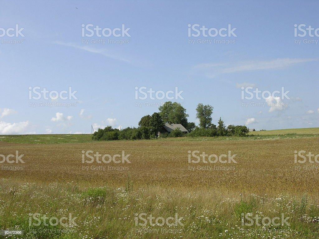 Farmhouse island royalty-free stock photo
