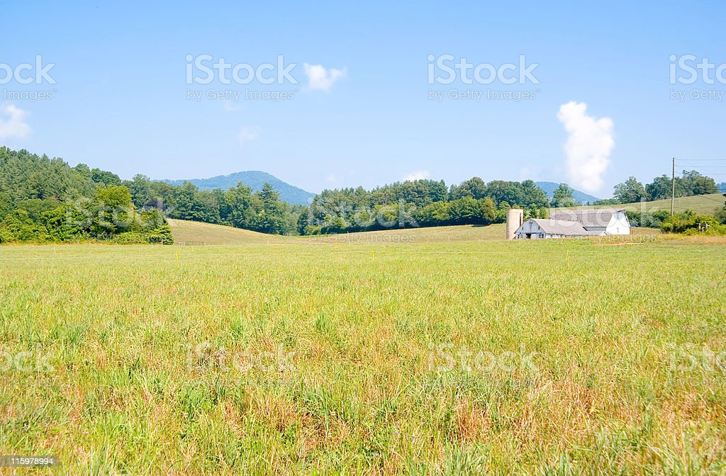 Farmhouse on a Meadow royalty-free stock photo
