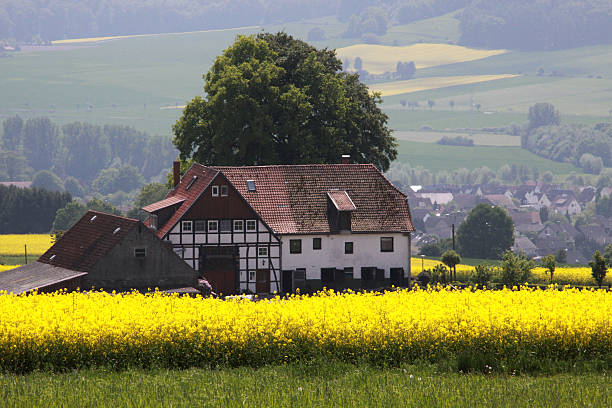 Bauernhaus mit Vergewaltigung Feld – Foto