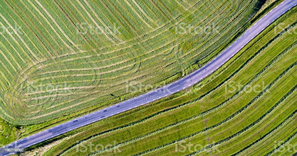 Jordbrukets grödor och road konst bildbanksfoto