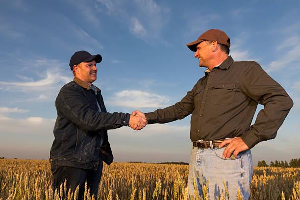 Landwirtschaft Hände schütteln – Foto