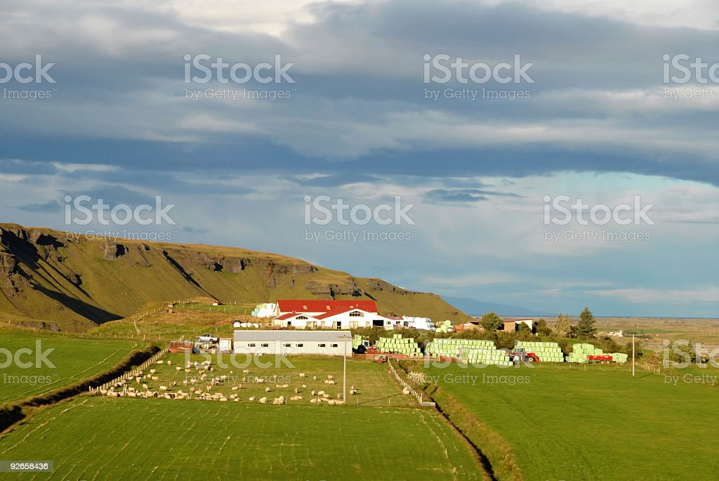 Farming in Iceland royalty-free stock photo