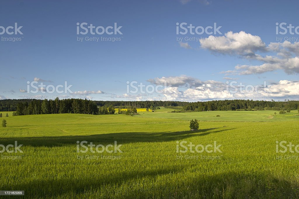 Farming is part of the nature royalty-free stock photo