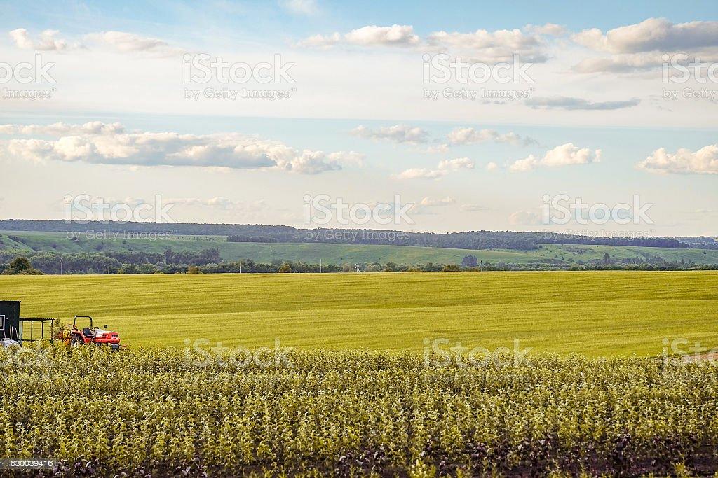 Farming stock photo