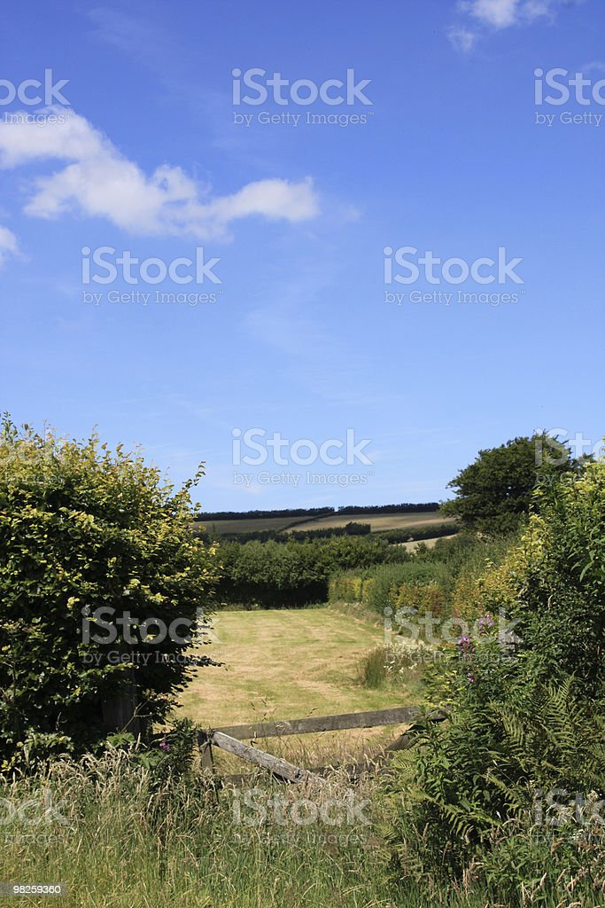Agricoltura foto stock royalty-free