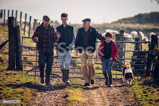 Family of farmers walking along a track with a dog following closely. Gate closed behind them with sheep out of focus in the background. Senior male with mid adult farmer and his sons.