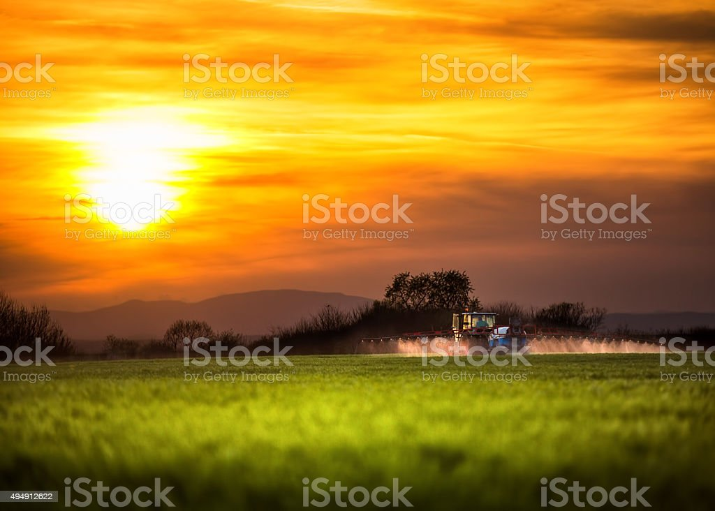 Farming tractor plowing and spraying, sunset shot stock photo
