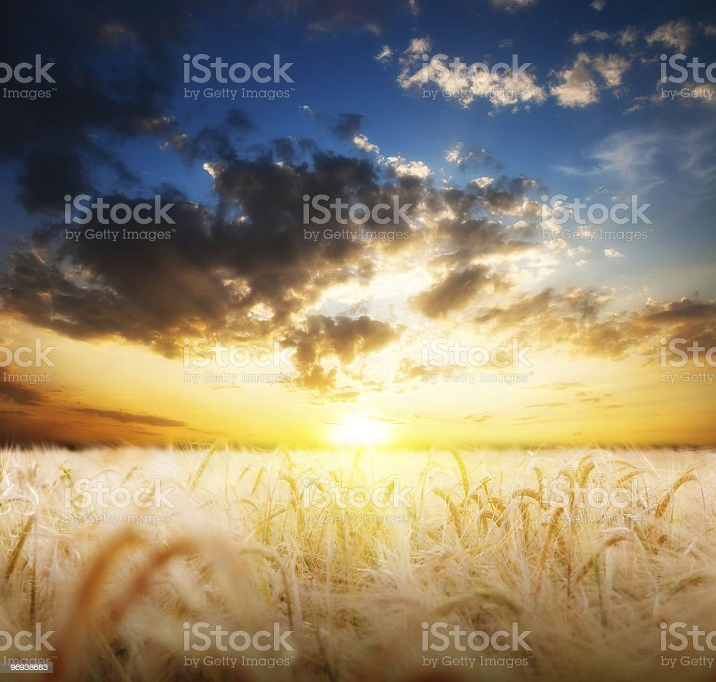 Farmland and beautiful sunset royalty-free stock photo