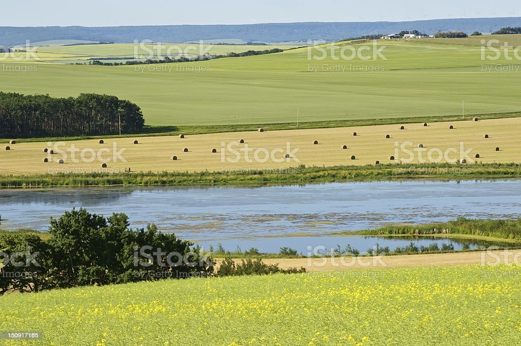 Farmland and small lake stock photo